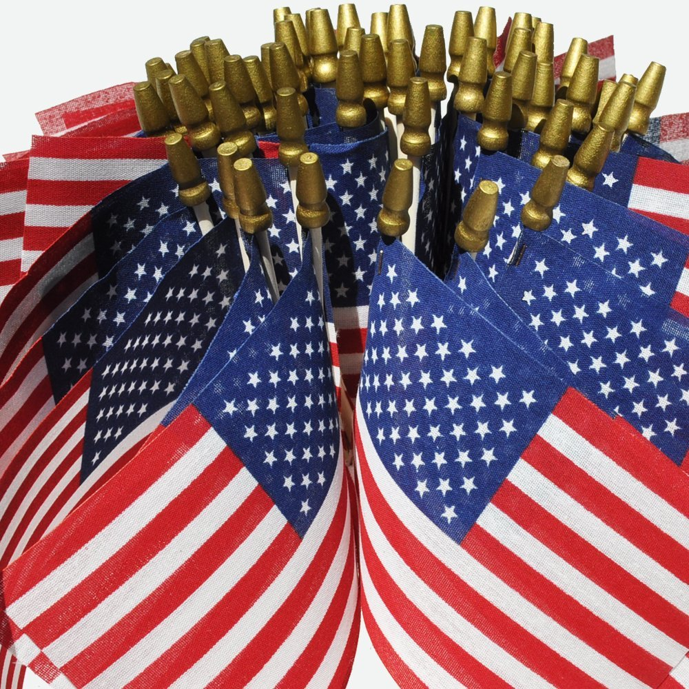 Hand Held American Flags on Sticks