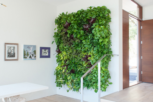 Living Walls For Bedroom